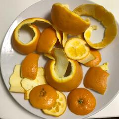 勿体無い/手作り/マーマレード/おうちごはんクラブ/グルメ オレンジって、簡単に剥いて食べたれないか…(6枚目)