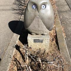 フォロー大歓迎/フクロウ/町歩き 私の住む市のある一角に、こういうフクロウ…
