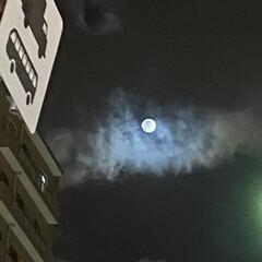 満月の夜空/満月の夜/満月 満月には、1日早いけれど、ちょうど雲の隙…