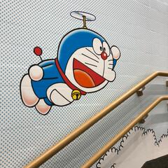 バスケット/B.LEAGUE/横浜ビー・コルセアーズ/川崎ブレイブサンダース/神奈川ダービー/とどろきアリーナ/... 昨夜、娘とB.LEAGUE神奈川ダービー…(3枚目)