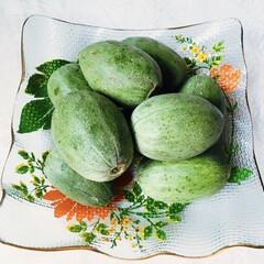 メロンの子/夏野菜/初めての食材/メロンの漬け物 🍈摘果メロン(子メロン)🍈 👀初めての食…