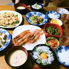 地元食材/しらす丼/キャベツ、さつま揚げ炒め/つぶ、高野豆腐煮物/サーモンガーリック香味焼き/海老の刺身/... 🍚我が家の夕食🥢 海老刺し🦐 サーモンガ…