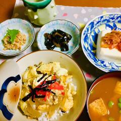 手作り/豆腐/玉子丼/フォロー大歓迎/わたしのごはん/おうちごはんクラブ/... 🥚今日は1人夕食🥚 玉子丼。 厚油揚げ・…