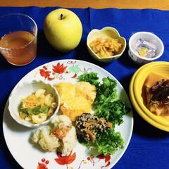 ランチョンマット/鮭とば/我が家の夕食/おうちごはん/簡単/100均 🍚我が家の夕食🥢 鮭とば・大根煮。 ひじ…