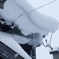 危険箇所/電線/屋根の雪/寒波/積雪 ⛄️大雪・低温・着雪・注意報🥶 電線危険…