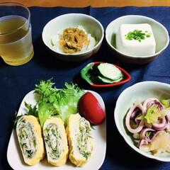 ランチョンマット/食器/ロールケーキ/我が家の夕食/おうちごはん/うちの定番料理 🍚我が家の夕食🥢 小松菜入卵焼き🥚 イカ…