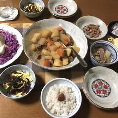 NARUMI 食器セット 唐子 9個セット 中華 電子レンジ温め対応 日本製 40186-33409(その他キッチン、台所用品)を使ったクチコミ「今日の夕食🥦 定番 うちの肉じゃが(玉ね…」