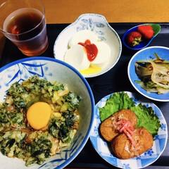 うど/地元食材/山菜料理/我が家の夕食/おうちごはん/うちの定番料理 🍚我が家の夕食🥢 うどの天丼。 さつま揚…