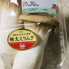 おはぎ/赤飯/いなだバター醤油焼き/彼岸団子/さつま芋天/とうもろこし/... 🍚我が家の夕食🥢 カレイ唐揚げ。 ネギ入…(2枚目)