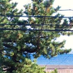住まい/リフォーム/フォロー大歓迎/ここが好き/海の見える家 🏝海が見える我が家🌊 少し電線が邪魔にな…