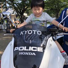 子育て/岡崎公園/白バイ/お出かけワンショット/おでかけワンショット 岡崎公園でのイベントにて白バイに乗せても…