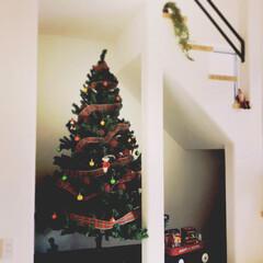 漆喰壁/階段下/クリスマスツリー/インテリア/住まい/建築/...