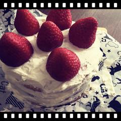 ヘルシースイーツ/糖質制限ダイエット/糖質制限/低糖質 低糖質な苺のショートケーキ作ったよ🍓