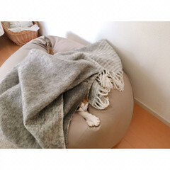 猫と賃貸/賃貸インテリア/一人暮らしインテリア/ワンルームインテリア/猫との暮らし/おやすみショット 海苔巻きミー助。  両端から具材がはみ出…(3枚目)