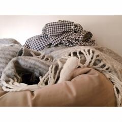 猫の寝相/猫と賃貸/猫とインテリア/一人暮らし/一人暮らしインテリア/ワンルームインテリア/... ソファーからいっぽん  可愛いててが  …(8枚目)