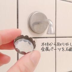 ダルトン ソープホルダー マグネットソープホルダー Magnetic soap holder 石鹸台 石鹸置き ダルトン DULTON CH12-H463 固形石けん専用   DULTON(せっけん)を使ったクチコミ「今年のベストバイ。  石鹸置きひとつでも…」(5枚目)