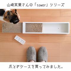 爪とぎケース/towerシリーズ/山崎実業/にゃんこ同好会/うちの子ベストショット 税込2.700円。  安くはない…