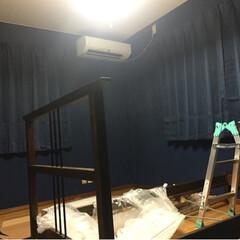 紺/青/壁紙DIY/ペンキ/ペンキ塗り 塗り専。 「ゴージャス&ラグジュアリー」…