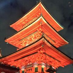 国内旅行/日本/写真/旅行/京都 きやうと  5年前とかに「あ、今から京都…