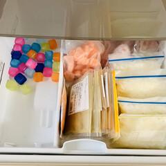 冷凍庫収納/100均/節約/ダイソー/時短レシピ/ラク家事/... 冷凍庫 1段目☆    ここには カレー…