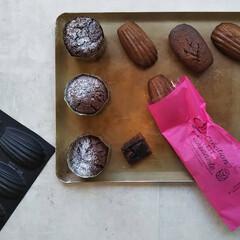 チョコレート/焼き菓子/お菓子/お菓子作り/スイーツ/おすすめアイテム/... マドレーヌ・オ・ショコラ 不思議な材料レ…