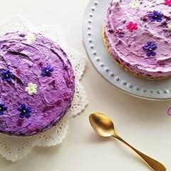 ケーキ/ブルーベリー/エディブルフラワー/チーズケーキ/レアチーズケーキ/ハンドメイド/... *エディブルフラワーのレアチーズケーキ*…