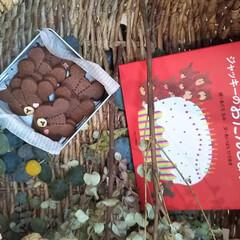 クッキー缶詰め/絵本/ジャッキー/お菓子作り/お菓子/焼き菓子/... *くまのがっこうのクッキー* ジャッキー…