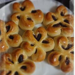 ぱん/ステイホーム/手作り/おうちごはん/暮らし ステイホーム🏠️  久しぶりのパン作り …(1枚目)