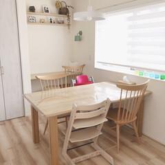 飛騨家具/タチカワ/Kivi/凸ランプ/飾り棚/トリップトラップ/... ダイニングスペース♪ キッチンと横並びな…