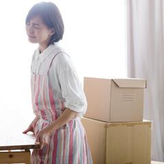 インテリア/家具/ソファー/キャビネット/配送/インテリア家具/... 家具を購入しても、自分で組み立てたりしな…