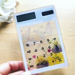 ハーバリウム電卓/電卓/文房具/ダイソー/雑貨/ハンドメイド/... ダイソーでスケルトンの電卓を見つけたので…