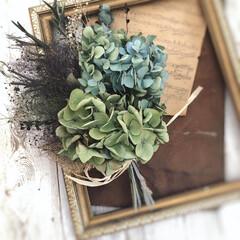 スモークツリースワッグ/紫陽花スワッグ/ドライフラワースワッグ/ドライフラワーのある暮らし/雑貨/DIY/... 大好きな秋色紫陽花とスモークツリーのドラ…(2枚目)