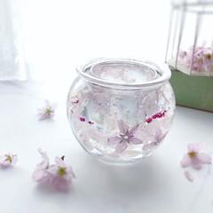 キャンドルホルダー/桜/固めるハーバリウム/ピンク/セリア/100均/... 春のピンクと言って真っ先に思うのが、桜🌸…