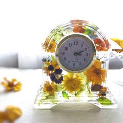 フラワー時計/固まるハーバリウム/雨季ウキフォト投稿キャンペーン/令和の一枚/フォロー大歓迎/LIMIAスイーツ愛好会/... 固まるハーバリウムで、フラワー時計を作り…