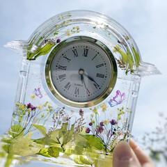 ハーバリウム/時計/ハーバリウム時計/固まるハーバリウム/固めるハーバリウム/雑貨/... 5月になりましたね! 新緑の野原のイメー…
