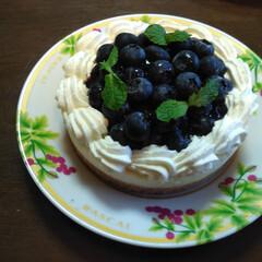 グルメ/フード/スイーツ/手作りお菓子/手作りケーキ/ケーキ/... ブルーベリーのレアチーズタルトを、作りま…