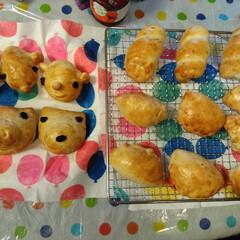 手作りパン/動物パン/焼き立てパン/おうちカフェ/手づくりパン 今日は、家族で、パンを焼きました😊 プレ…