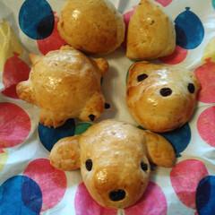 手作りパン/焼き立てパン/おうちカフェ/動物パン 今日は、お昼に、家族👪で、動物パンを焼き…(2枚目)