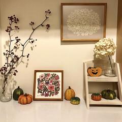 バーズワーズポスター/サンキライ/パンプキン/北欧インテリア/玄関ディスプレイ/ハロウィンディスプレイ/... 玄関のハロウィンディスプレイ🎃玄関は季節…