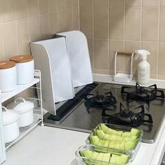 イワキ 保存容器 パック&レンジ 角型 4点セット ホワイト PTY-PRN-4W(食品保存容器)を使ったクチコミ「カットしたフルーツや野菜、おかずの作り置…」