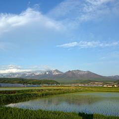 風景写真/風景 近所にて。同じ十勝岳でも数キロ違うとぜん…