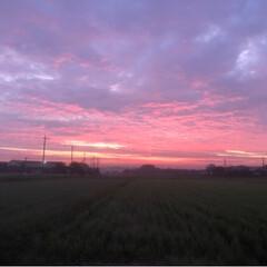 幻想的/田舎暮らし/朝焼け 近くの山に 朝焼けを見にドライブしてきま…(2枚目)