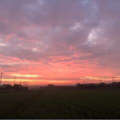 幻想的/田舎暮らし/朝焼け 近くの山に 朝焼けを見にドライブしてきま…(3枚目)