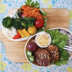 彩り/栄養バランス/お弁当/フード/フォトコンテスト/【手作りお弁当】フォトコンテスト 娘と自分のお弁当つくり(⍢)