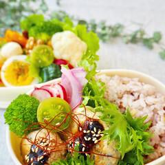 栄養バランス/彩り/女子高生のお弁当/詰めるだけ弁当/作り置き/おうちごはん/... 娘とわたしのお弁当づくり