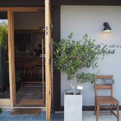 静岡/おでかけ/風景/旅行/建築/旅 静岡旅の途中でカフェに。 素敵な建物、空…