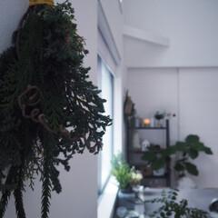スワッグ/クリスマス/ハンドメイド/雑貨/ダイソー/インテリア/... シンプルに静かに Christmasの訪…(1枚目)
