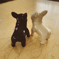 白&黒/フレンチブルドッグ/置き物/ダイソー/動物モチーフグッズ/雑貨/... ダイソーでみつけた  フレンチブルドッグ…