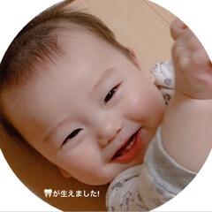 乳歯/孫ちゃん/次のコンテストはコレだ!/フォロー大歓迎 今日で7ヶ月になった孫の👑王子です♡  …(3枚目)