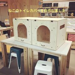 猫トイレカバー/猫トイレ/LIMIAペット同好会/にゃんこ同好会/トイレ/DIY 10キロオーバーの愛猫のトイレカバーを作…